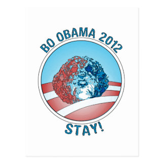 Pro-Bo Obama Dog 2012 Postcard