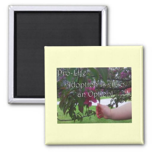 Pro-Life Expressions Magnets
