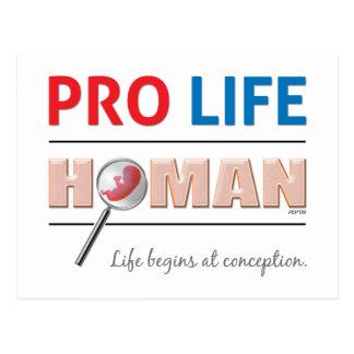 Pro Life Human Postcard