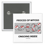 Process Of Mitosis Ongoing Inside Pinback Button