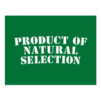 Product Of Natural Selection Postcard