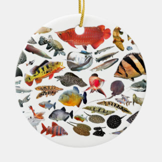 Product of photograph entering of large-sized trop round ceramic decoration