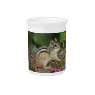 product with photo of cute chipmunk beverage pitchers