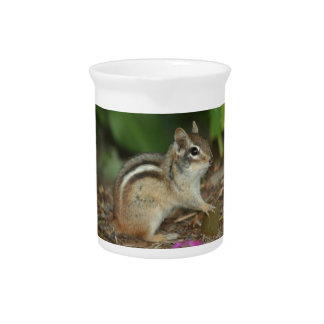 product with photo of cute chipmunk pitchers