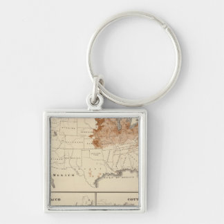 Products raised in 1870 Hay Tobacco Cotton Silver-Colored Square Key Ring