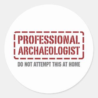 Professional Archaeologist Round Sticker