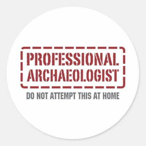 Professional Archaeologist Sticker