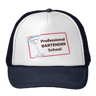 Professional Bartending School Michigan Cap
