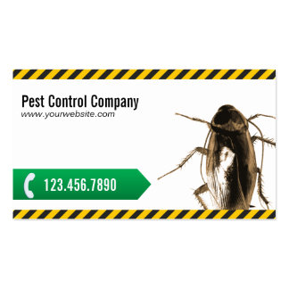 Professional Pest Control Business Cards