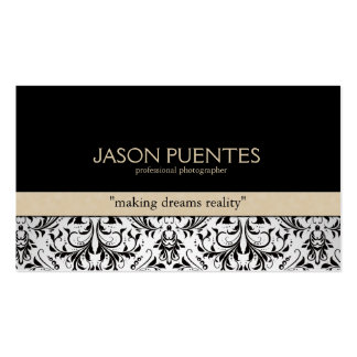 Professional Photographer Damask Business cards