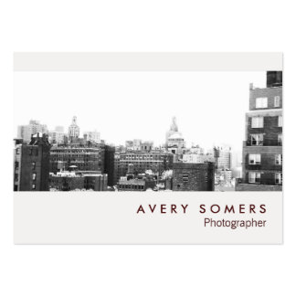 Professional Photographer Photo Insert Photography Pack Of Chubby Business Cards