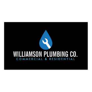 Professional Plumbing Logo II and Business Card