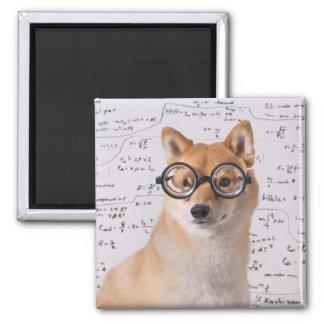 Professor Barkley 2 Inch Square Magnet