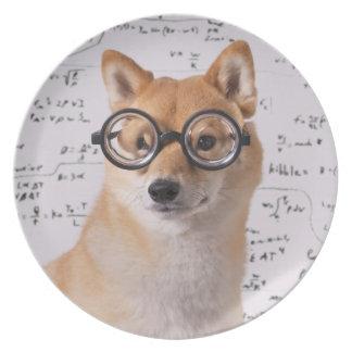 Professor Barkley Melamine Plate