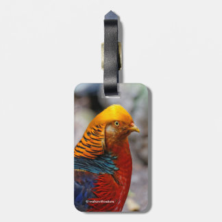 Profile of a Golden Red Pheasant Luggage Tag