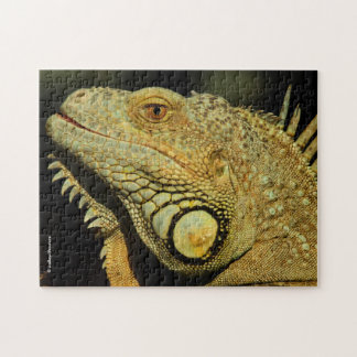 Profile of a Green Iguana Jigsaw Puzzle