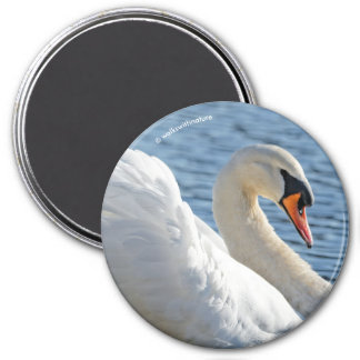 Profile of a Mute Swan 7.5 Cm Round Magnet