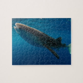 Profile of a whale shark, Indonesia Jigsaw Puzzle