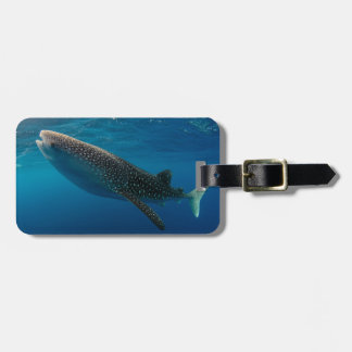 Profile of a whale shark, Indonesia Luggage Tag