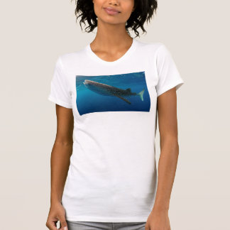 Profile of a whale shark, Indonesia T-Shirt
