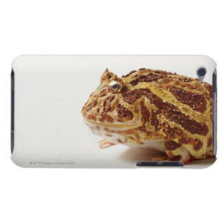 Profile of Argentine Horned Frog Barely There iPod Cover