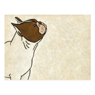 Profile of French Bulldog Looking Up Postcard