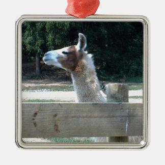 Profile of Llama Silver-Colored Square Decoration