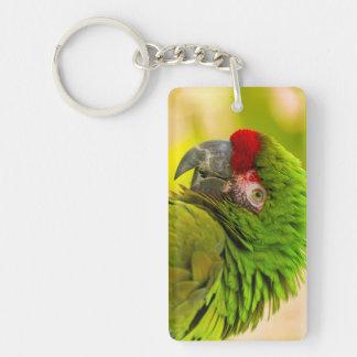 Profile of macaw at Santa Barbara Zoo Key Ring