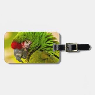 Profile of macaw at Santa Barbara Zoo Luggage Tag