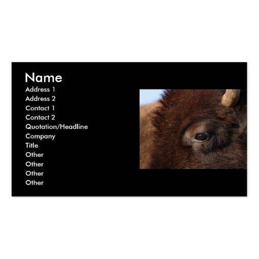 profile or business card, bison