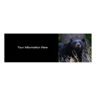 profile or business card, black bear pack of skinny business cards