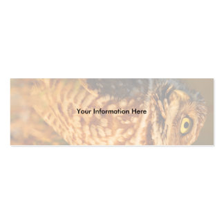 profile or business card, burrowing owl