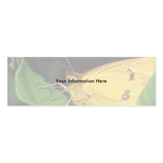 profile or business card, butterfly