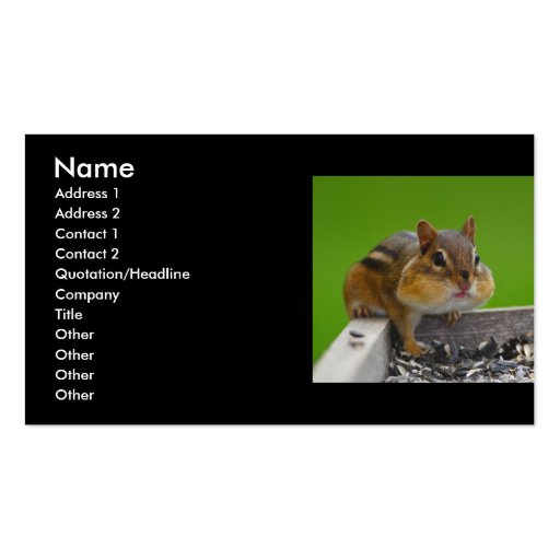 profile or business card, chipmunk
