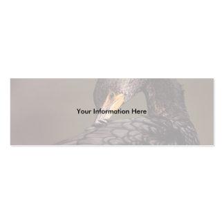 profile or business card, cormorant