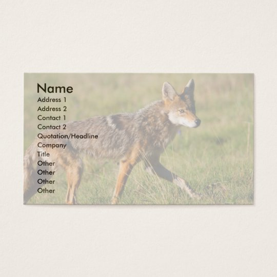 profile or business card, coyote business card