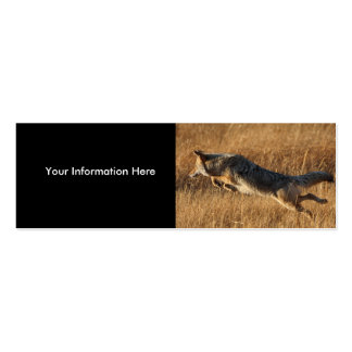 profile or business card, coyote jumping