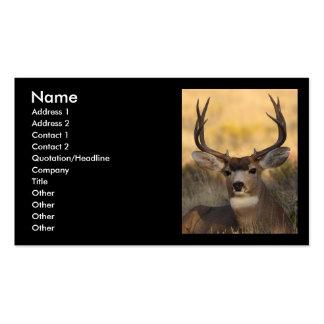 profile or business card, deer
