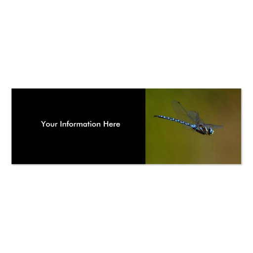 profile or business card, dragonfly
