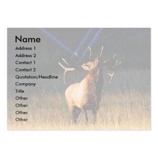 profile or business card, elk