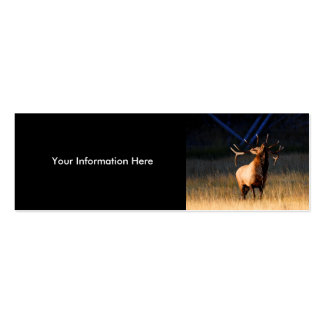 profile or business card, elk pack of skinny business cards