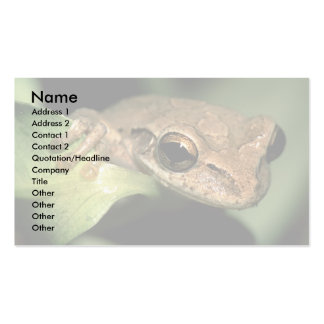 profile or business card, frog