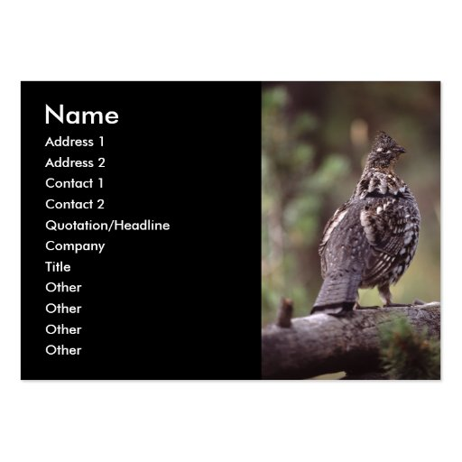 profile or business card, grouse