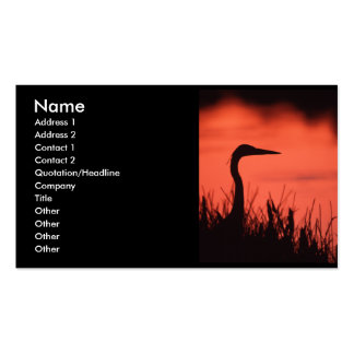 profile or business card, heron pack of standard business cards