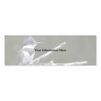 profile or business card, kingfisher