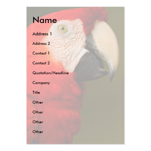 profile or business card, macaw