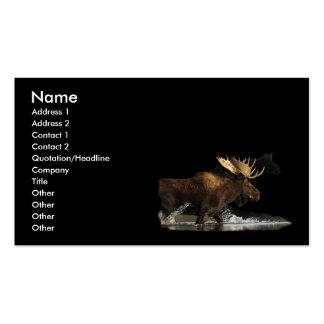 profile or business card, moose splash