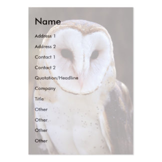 profile or business card, owl pack of chubby business cards