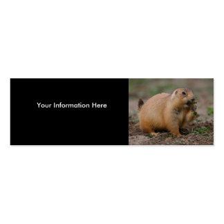 profile or business card, prairie dog