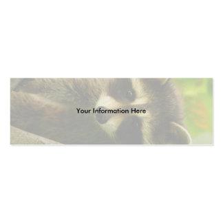 profile or business card, raccoon